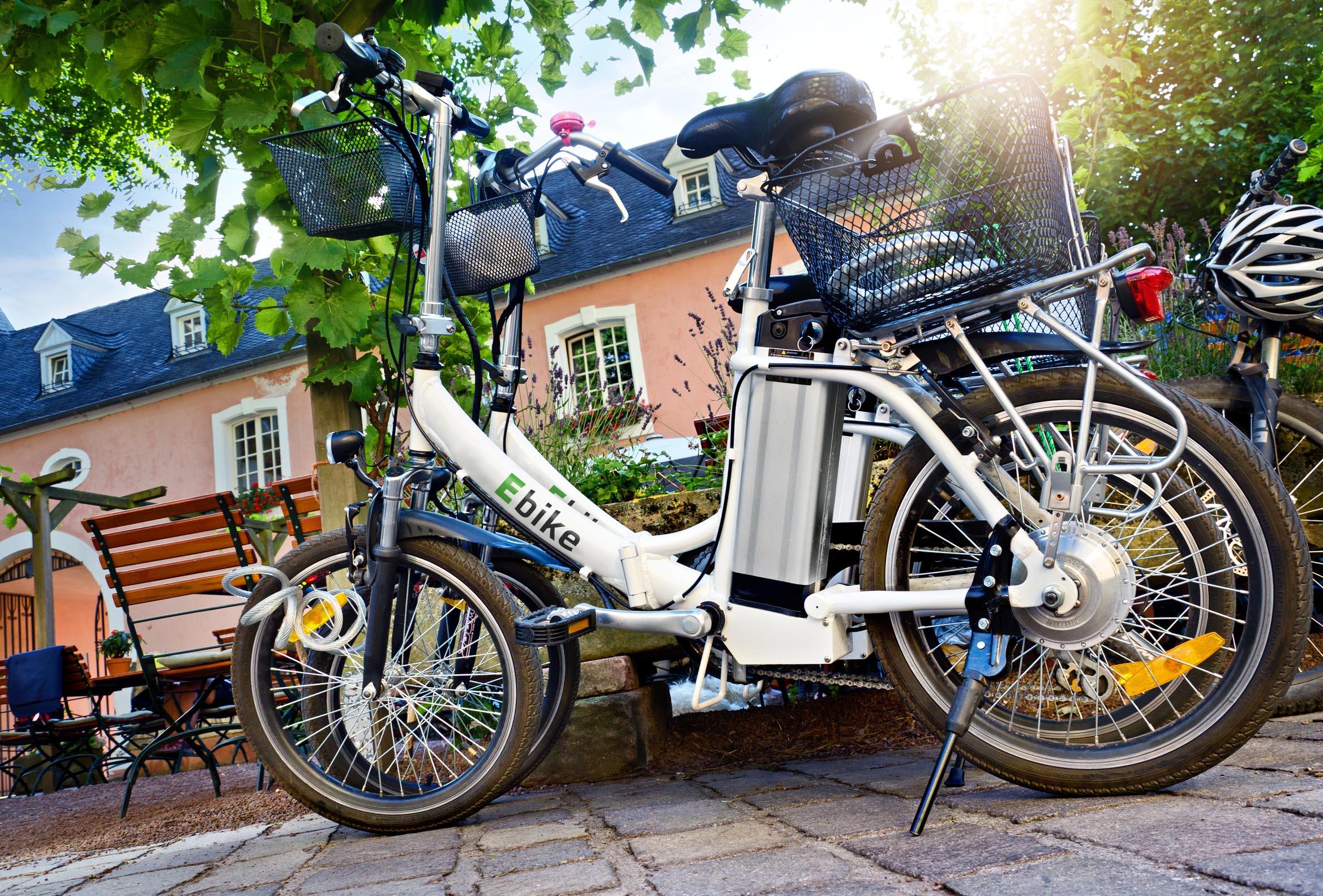 Pedelecs und E-Bikes